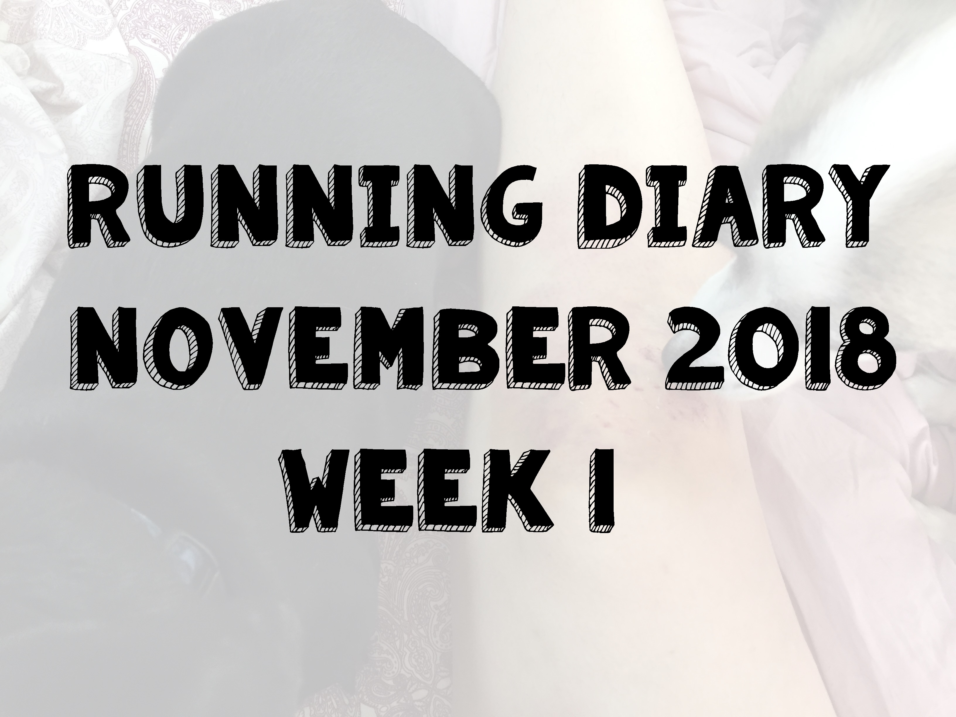 Running Diary November 2018 Week 1 Title Image