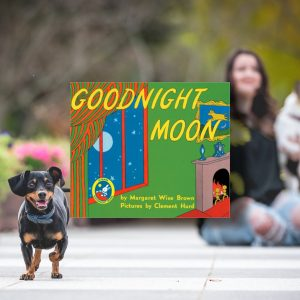 Image from bookstagram. Background is Remus and book in foreground is Goodnight Moon.